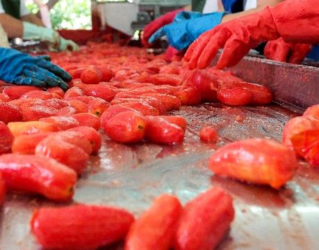 """Lunedì 24 Luglio Solania presenta """"il Mio S. Marzano D.O.P.""""Show- cooking dello Chef Gianfranco Vissani."""