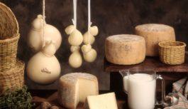 """Cheese lovers a Cremona per l'evento """"Formaggi & Sorrisi"""""""