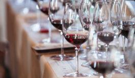 Percorsi sensoriali in calice per conoscere l'Umbria del vino