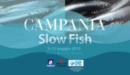 A Slow Fish, vetrina di prodotti ittici, va in scena la Campania del mare